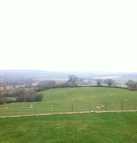 Countryside view from Rock Farm