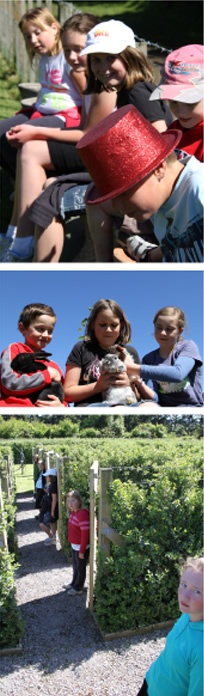 Lots of fun with the kids.