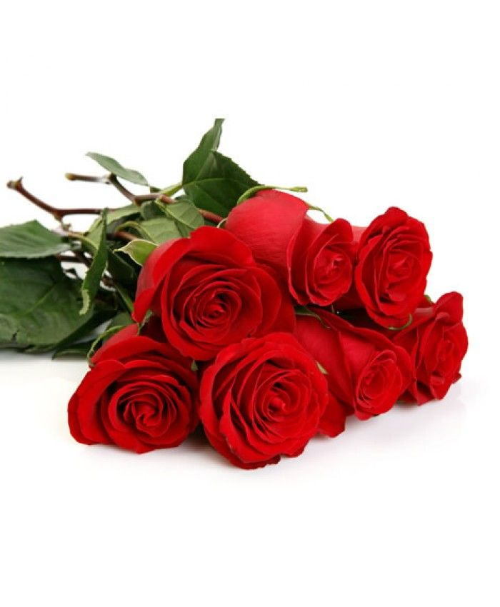Really Love Matters.... gift this beautiful bunch of RED ROSES to your loved one and make him/her feel special....  Product Code: BUGSPL5 Price:- Rs.399.00