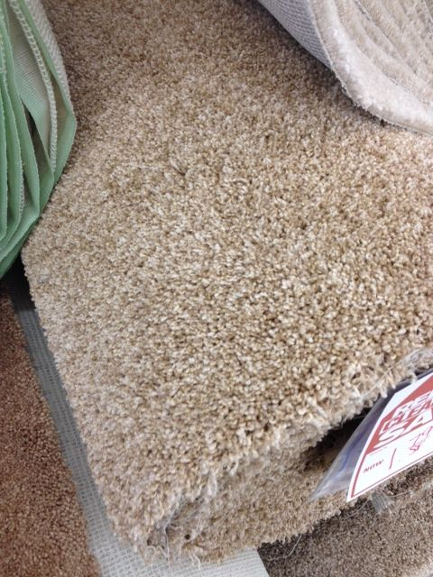 Luray Crescent 179sf Clearance Carpet Pinterest