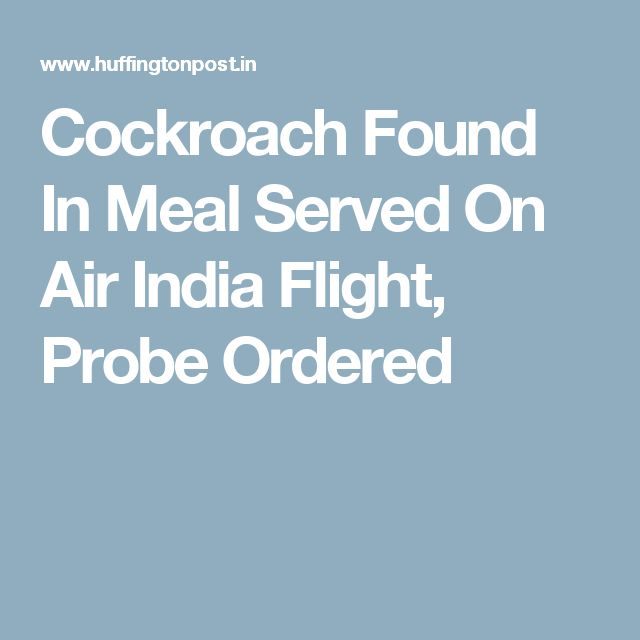 Cockroach Found In Meal Served On Air India Flight, Probe Ordered