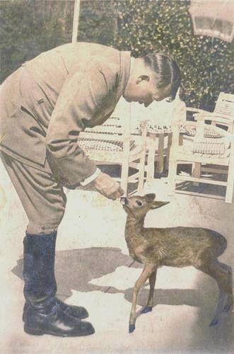 Nationalsozialisten waren die ersten Gesetze gegen die Vivisektion zu erlassen, gegen die Jagd für Tier und Umwelt.