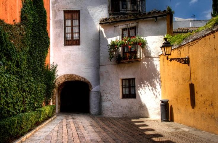 Barrio de la Juderia. Sevilla