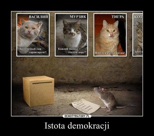 Istota demokracji –