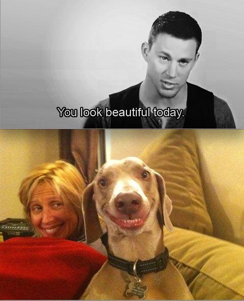 I laughed so hard at this...