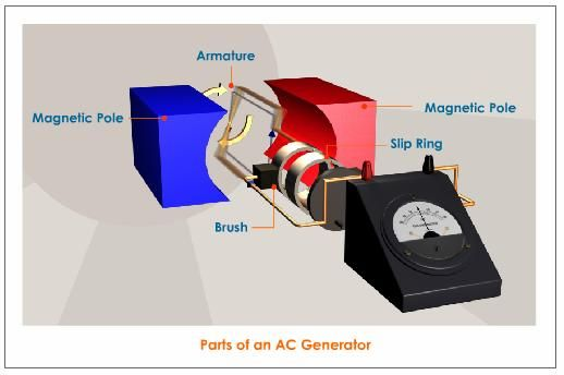Main Parts of the AC Generator