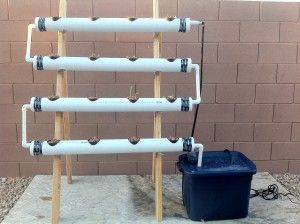 How I Built My Hydroponics System. Pete didn't let that stop him from starting a vegetable garden. Here he tells us about the hydroponic growing system