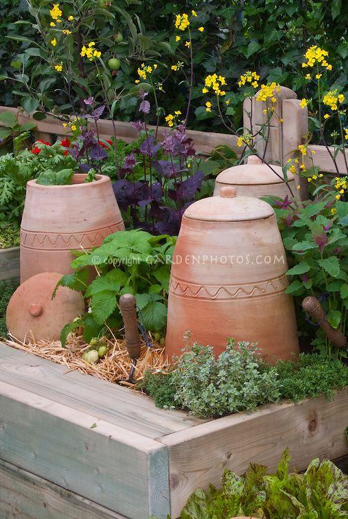 17 best ideas about Garden Cloche on Pinterest Terrarium Moss
