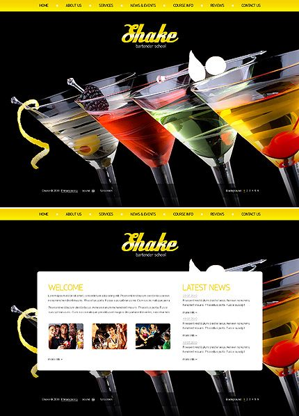 Shake Bartender Flash Templates by Di