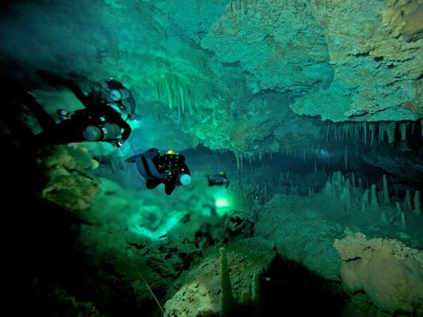 Blue Holes Project, Submerged caves, Kenny Broad Facts ...