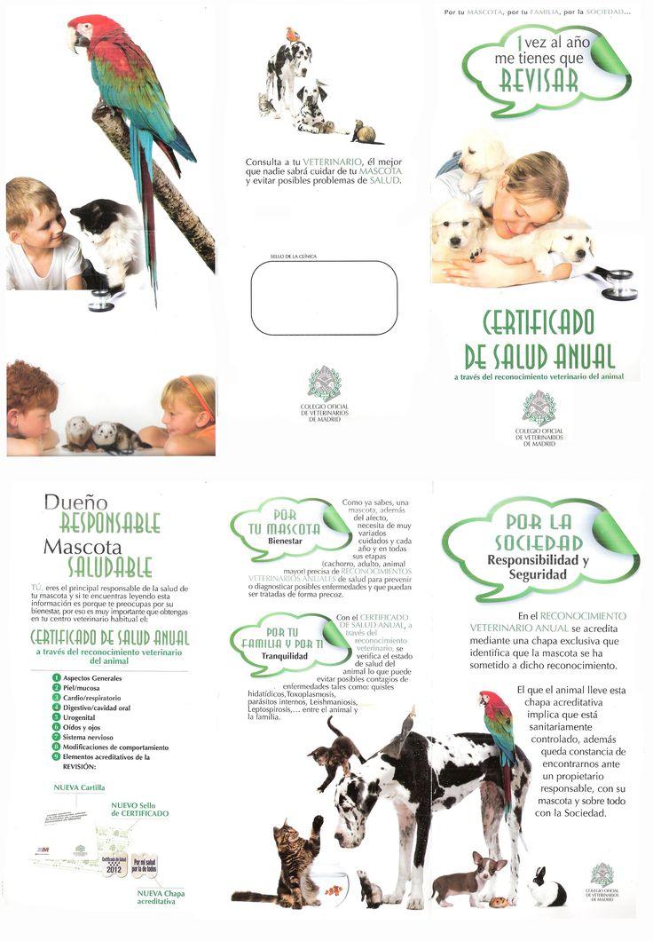 Certificado de Salud Anual a través del reconocimiento veterinario del animal. (Colegio Oficial de Veterinarios de Madrid)