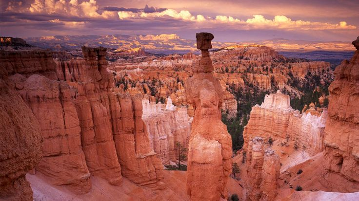 Bryce Canyon National Park, Utah: Bucket List, Thors Hammer, America, National Parks, Travel, National Park Utah, Bryce Canyon, Canyon National