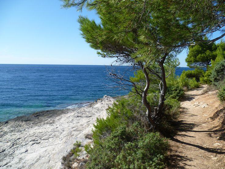 Always beautiful coastline of Istria!