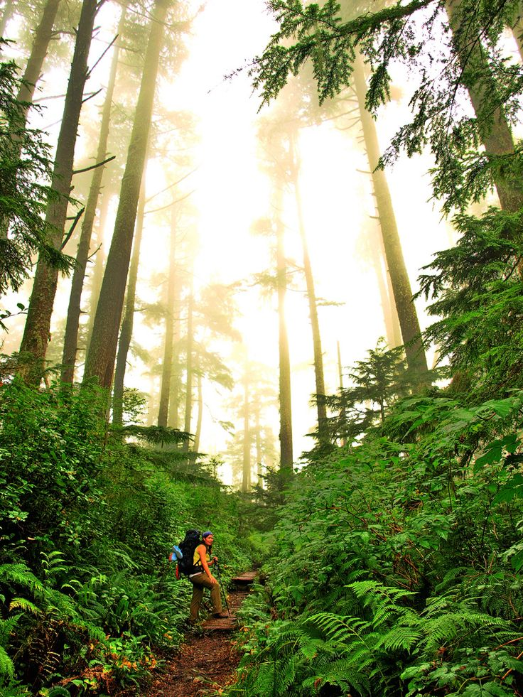 West Coast Trail, Vancouver Island, British Columbia. Canada. Credit: https://www.flickr.com/photos/footloosiety/