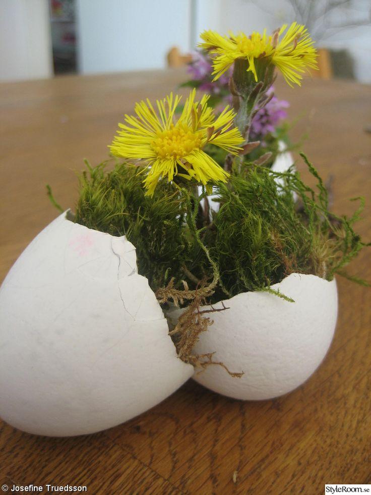 blomma bord stolar,blommor,ägg,äggskal,påsk,påskdekoration,fågelbo