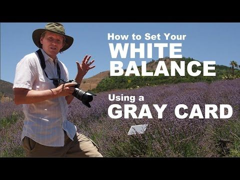 Setting Your White Balance with a Gray Card - a Tip from Phil Steele