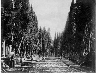 Scutari 1890. Yani Üsküdar, ama daha önce dediğim gibi Karacaahmet bir zamanlar Kadıköy'le bağlantılı bir mezarlık olduğu için değerli bir fotoğraf.