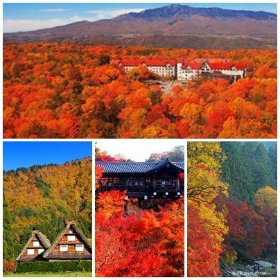 Taukah kamu Airpaz?   Bulan November waktu yang tepat untuk menikmati warna warni musim gugur di Jepang    http://blog.airpaz.com/id/rliburan-musim-gugur-ke-jepang/