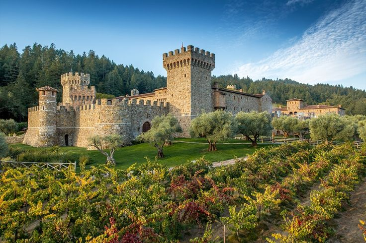 Castello Di Amorosa--fun, different, interesting. Large selection to taste from.