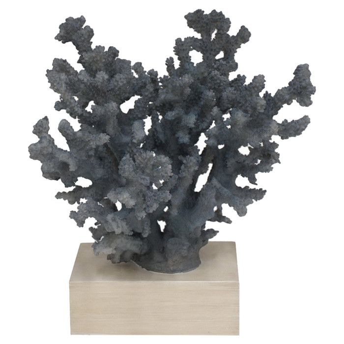 cool coral decor for any seaside home