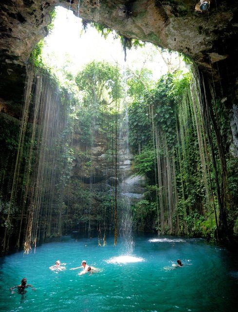 Wow.  I want to go here. It's called the Ik Kil Cenote, near Chichén Itzá, Mexico.