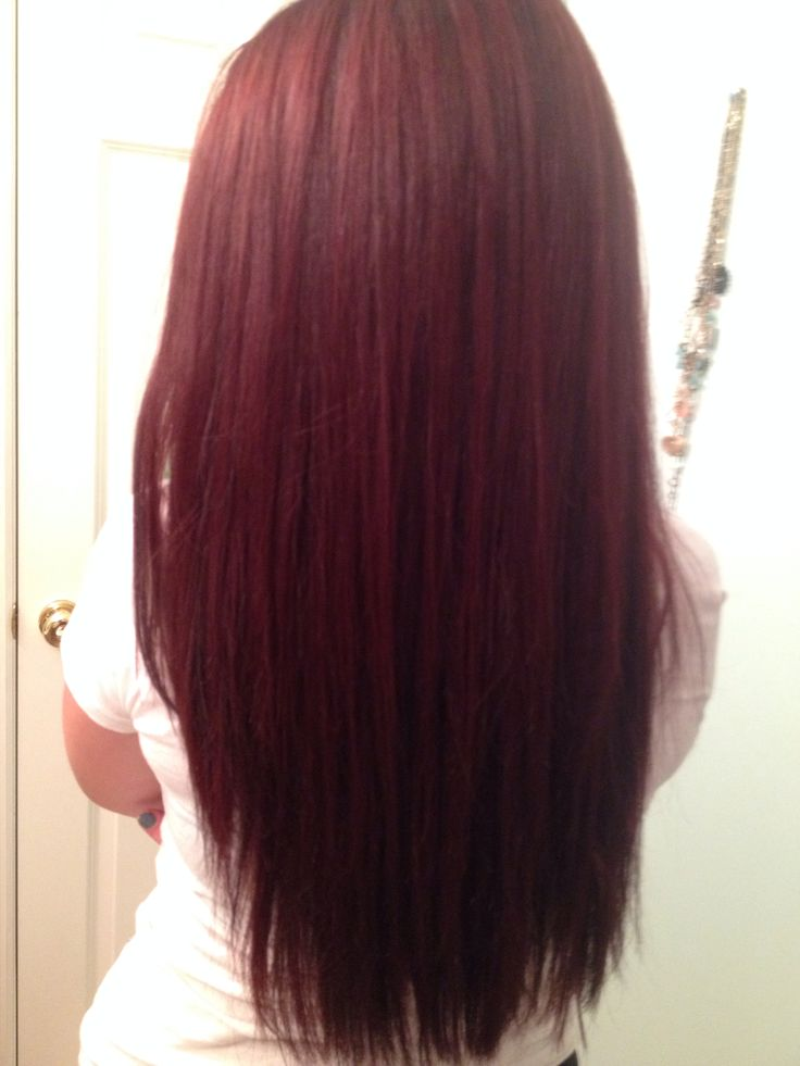 cherry cola red highlights dark brown hairs of black