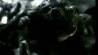 Budwiser frogs commercial - YouTube