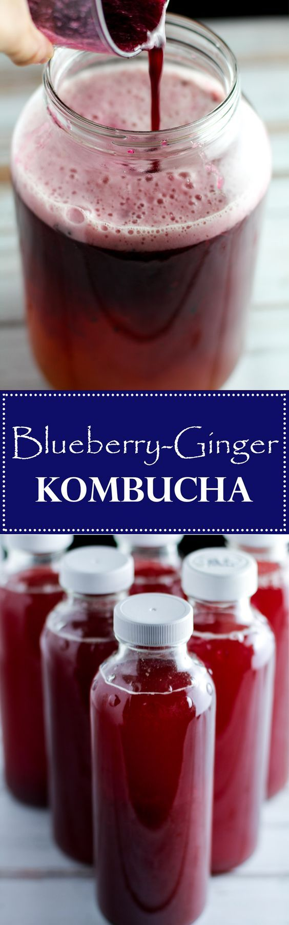 This flavored Blueberry Ginger Kombucha recipe is a tasty way to flavor your own homemade kombucha, a health drink full of nutrients and probiotics! via @fithappyfree