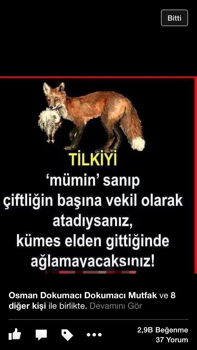 Türkiye'nin hali!
