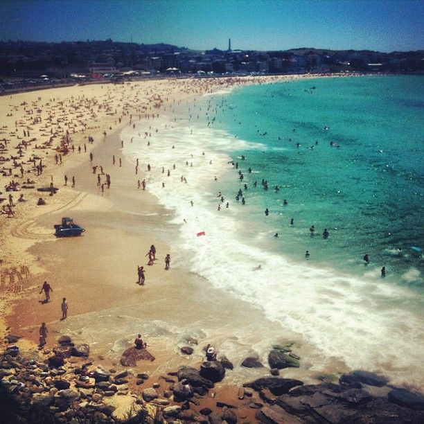 I really want to learn to surf in Bondi Beach Australia