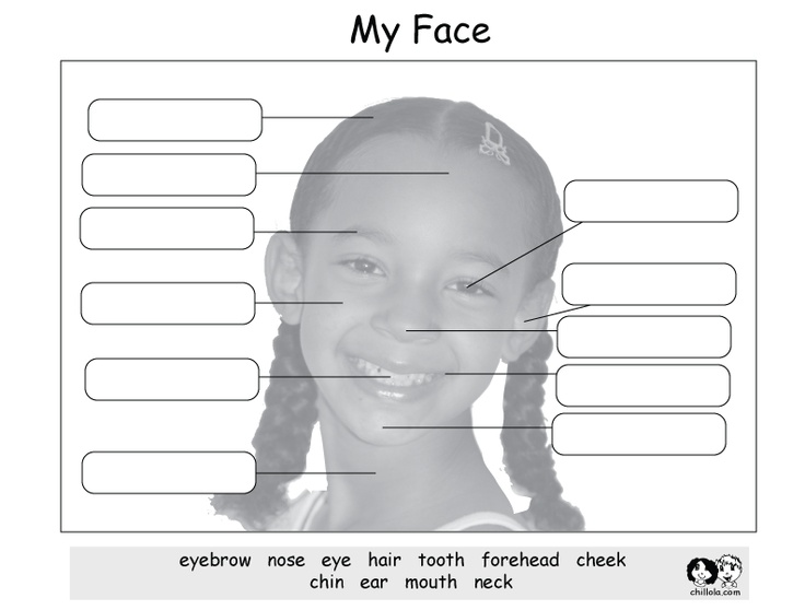 My Face - English Printout