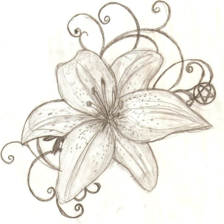 water lilies tattoos designs Tiger Lily Tattoos Design Flower Meanings ...
