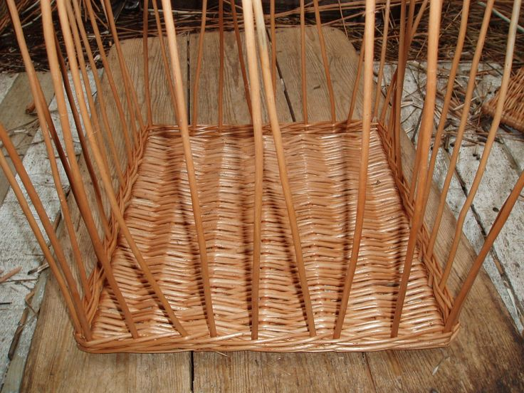 A basket always starts with the base.  The uprights are inserted into the base to be weaved through.  Finally the uprights will be folded down to create the border.