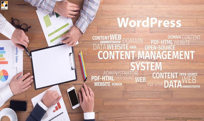 Technology Concept: Content Management Strategy Word Cloud