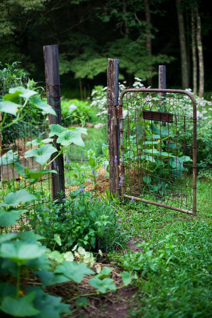 Rustic Garden Fence And Gate