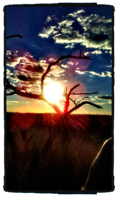 Love this sunset!  *Pretoria 17.03.2012
