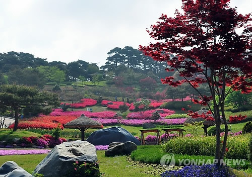 Beautiful Anmyeon-do, Korea!