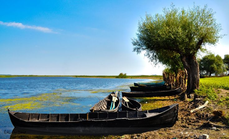 Va invitam in Delta Dunarii sa vizitati frumusetile acesteia!