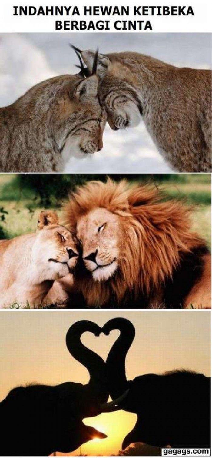 Inilah Indahnya berbagi cinta.....