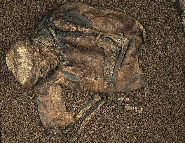 The violent death of the 'Worsley Man' shares chilling similarities with the famous Lindow Man, whose preserved body was found in a Cheshire peat bog in 1984. Tests suggest the Lindow man, who lived around 150 years earlier, had also been beaten, garrotted and had his throat slit... such a nasty way to go...