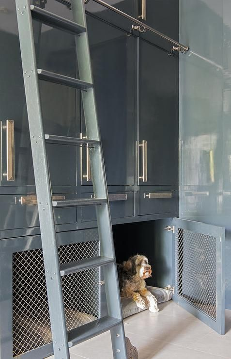 Glossy Gray Mudroom Ladder on Rails lacquer cabinets built in dog crate rolling ladder