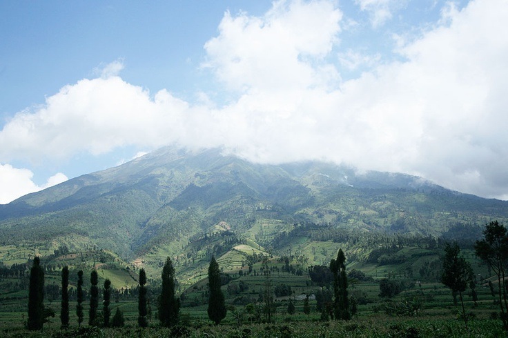 Beyond the fascinating temple complex of Dieng, Mount Prahu stand gallantly with its peak piercing the clouds.
