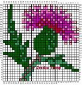 cross stitch thistle - Bing Images