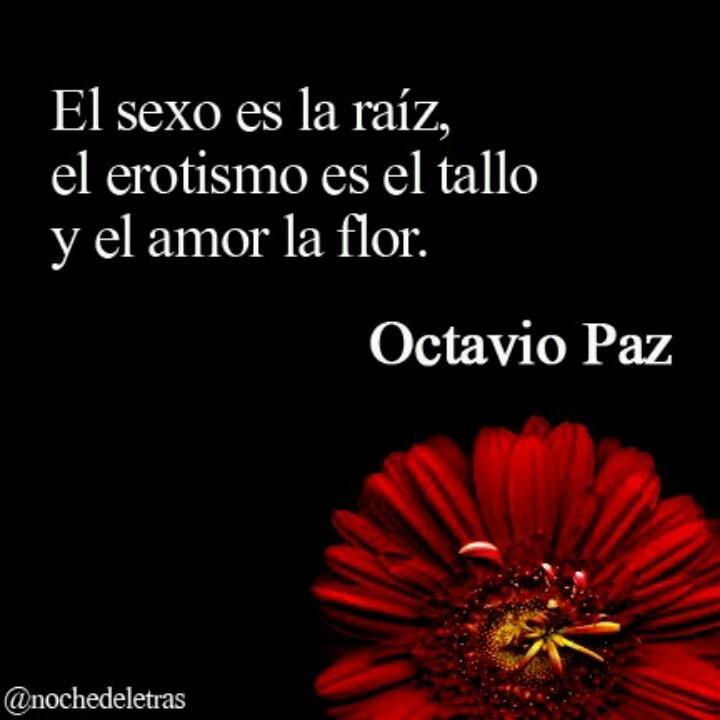 Raíz,  Tallo... y Flor!!