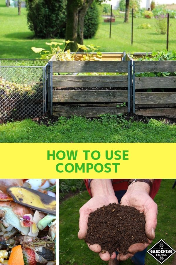 3 Ways To Use Compost Gardening For Beginners Compost Garden Pests