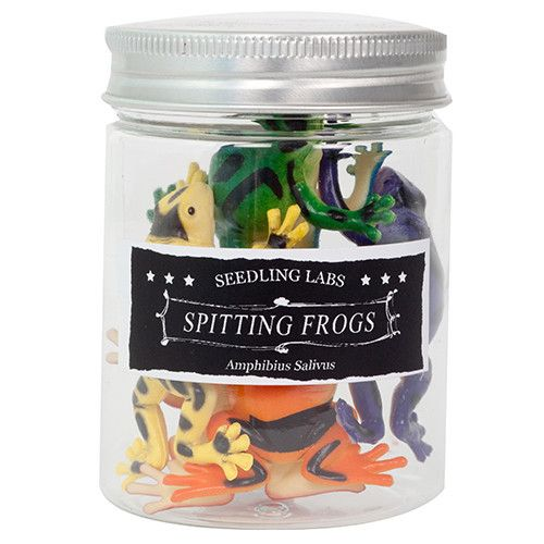 Amazing Spitting Frogs. Suck in the water and squirt it out!