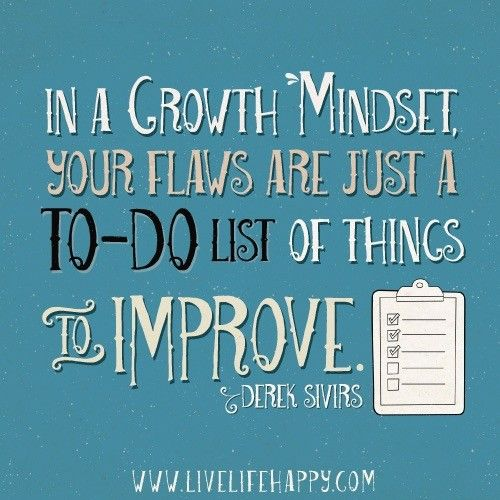 In a growth mindset, your flaws are just a TO-DO list of things to improve. - Derek Sivirs