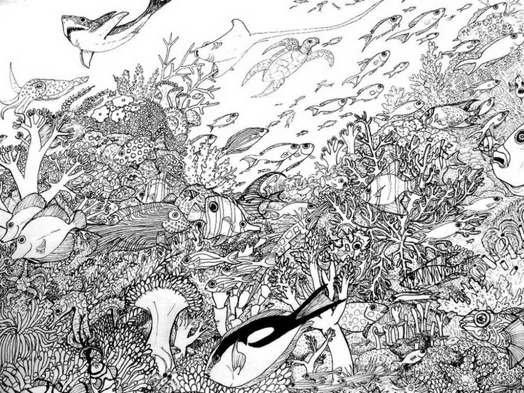 corals coral reef coloring pages kids coloring sheets octopus