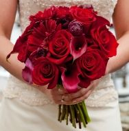 Crimson Dream Bridal Bouquet - Crimson Dream Bridal Bouquet > View Full-Size I... | Red, Crimson, Dream, Aud, Any | Bunchesdire
