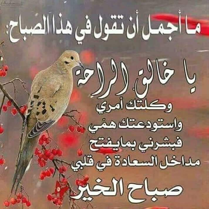 Pin By Ummohamed On اسماء الله الحسنى Quotes Hadith My Favorite Things